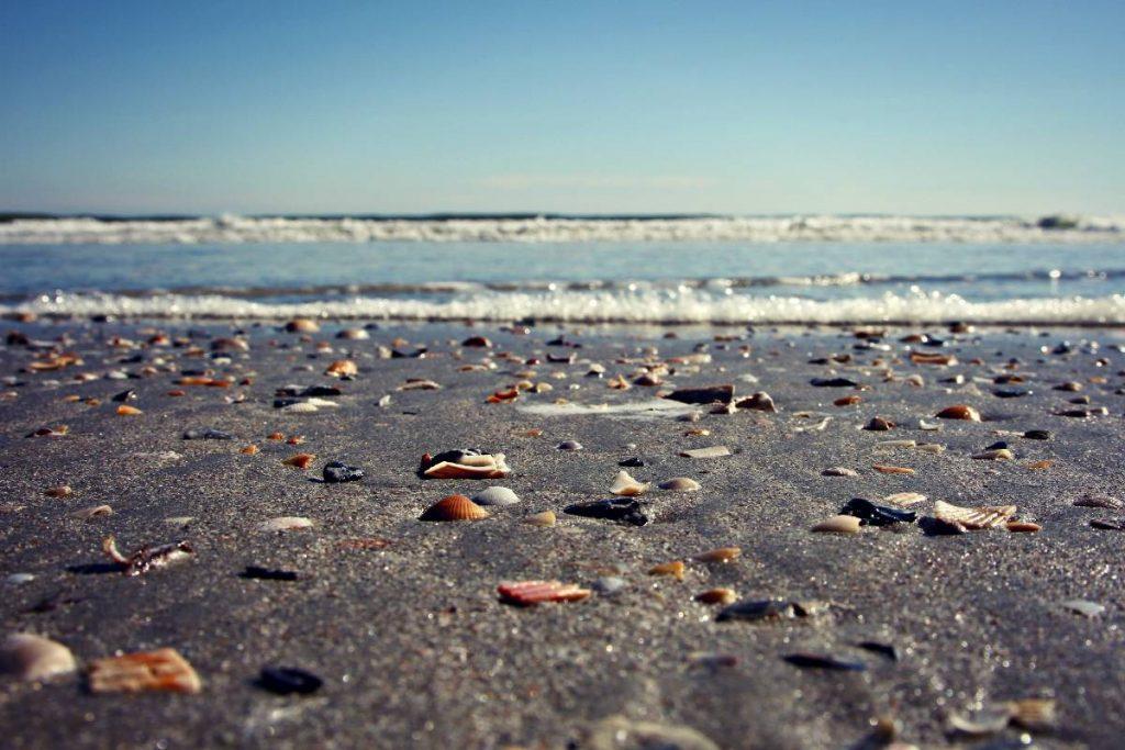 myrtle-beach-november-2005