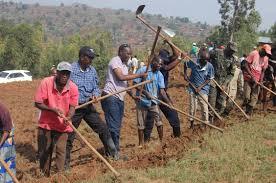 All about Umuganda